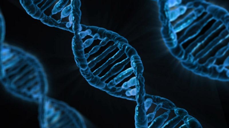premiera-in-medicina:-medicii-au-folosit-editarea-genetica-pentru-a-reda-vederea-unui-orb