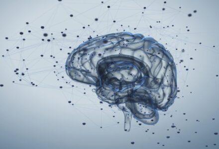 cum-ne-am-transformat-functiile-creierului-ca-sa-putem-citi