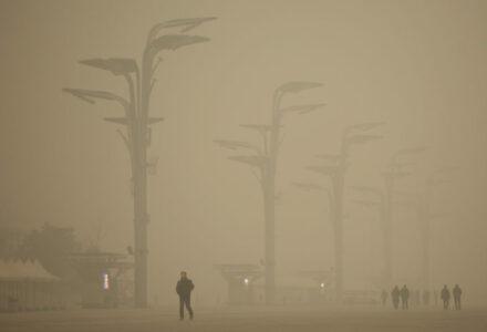 limitarea-deplasarii-din-timpul-pandemiei-a-dat-lumii-cea-mai-puternica-lectie-cand-vine-vorba-de-clima
